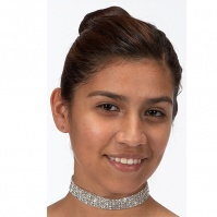 Dasha Stretch Rhinestone Choker - 5 Rows