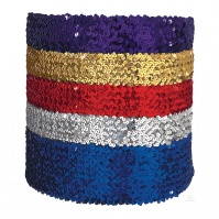 Eurotard 4 Wide Sequin Belt