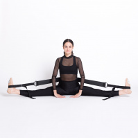 Flexistretcher 2.0
