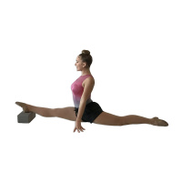Glamr Gear Yoga Blocks